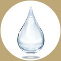 サッカロミセス培養液